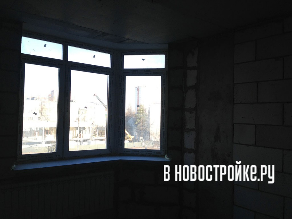 IMG_2644